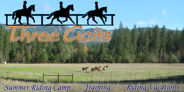 Three Gaits page header